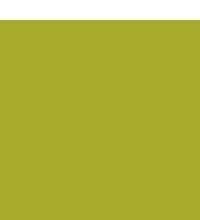 lombardi-savon-logo